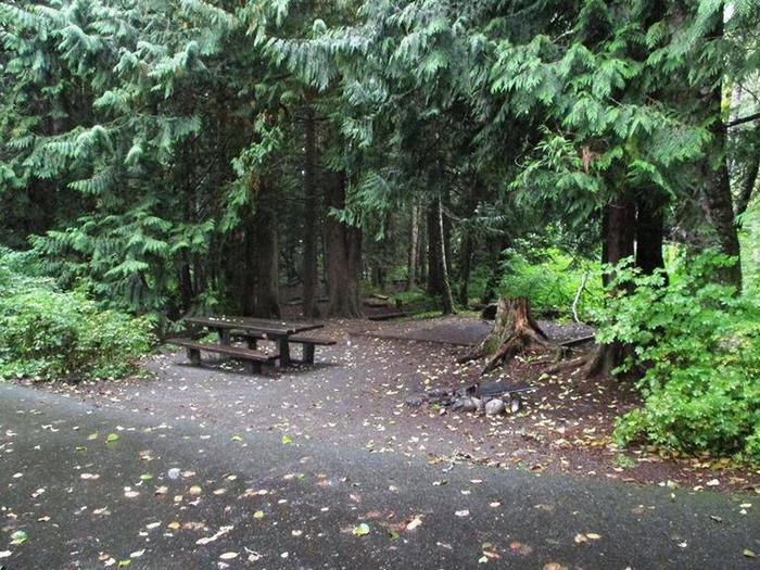 Denny Creek Campground Site 25Site 25