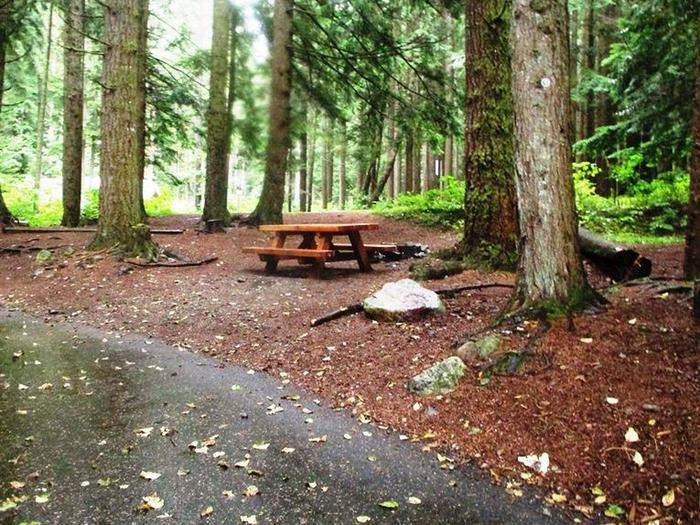 Denny Creek Campground Site 28Site 28
