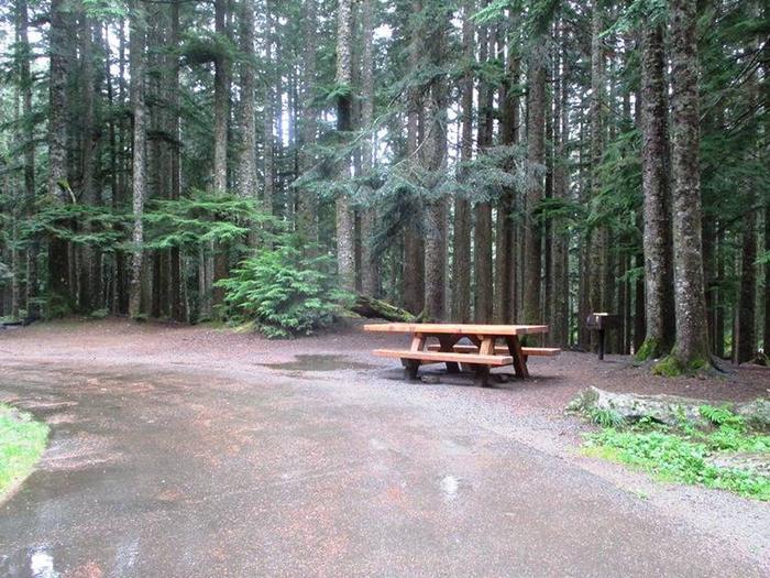 Denny Creek Campground Site 32Site 32