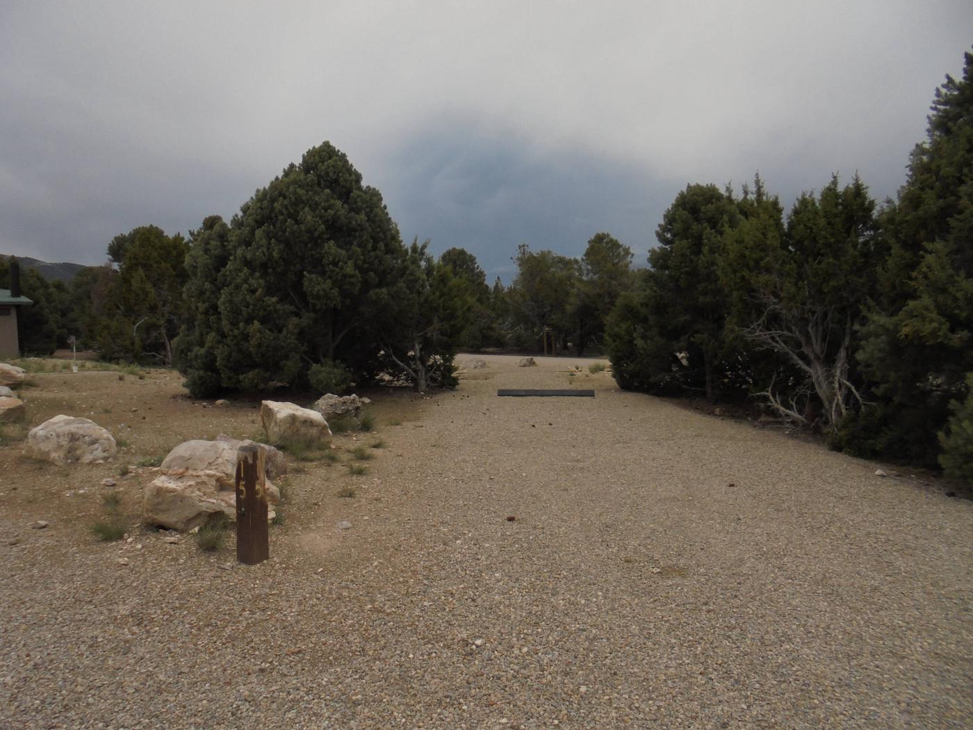 """""""I go to nature to be soothed and healed, and to have my sense put in order."""" ... John BurroughsCamp Site 015"""
