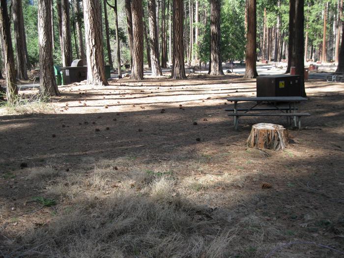 CampsiteCampsite 31.