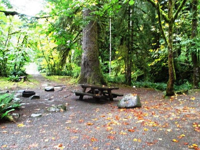 Verlot Campground Site 3
