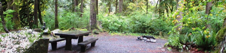 Verlot Campground Site 6