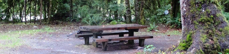 Verlot Campground Site 7