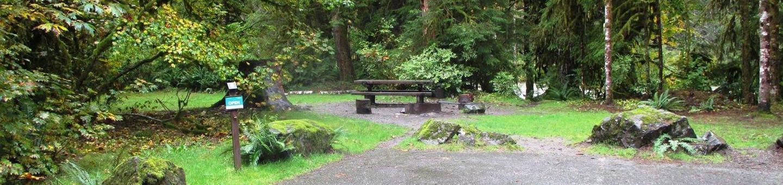 Verlot Campground Site 8