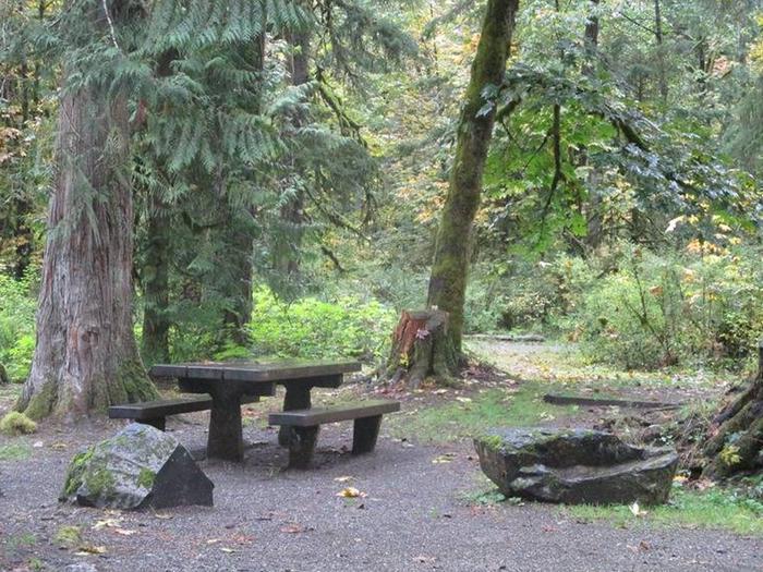 Verlot Campground Site 12