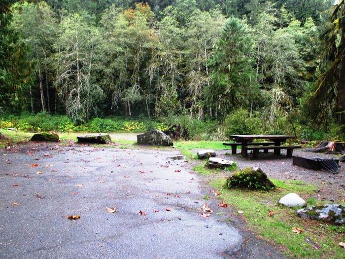Verlot Campground Site 15