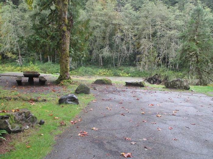 Verlot Campground Site 16