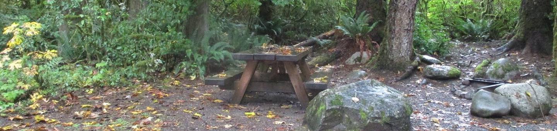 Verlot Campground Site 19