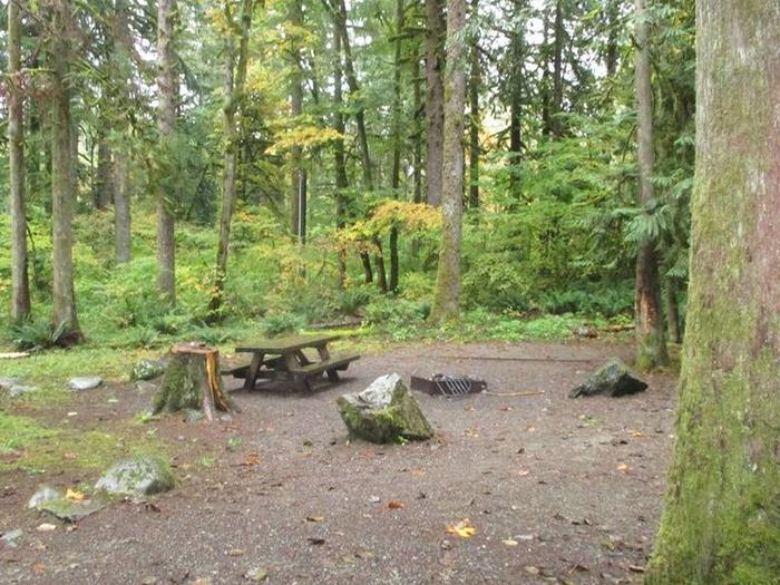 Verlot Campground Site 20