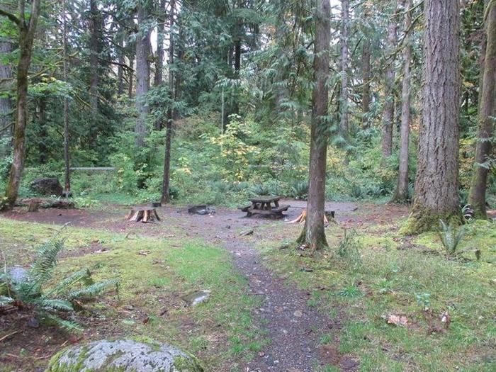 Verlot Campground Site 21