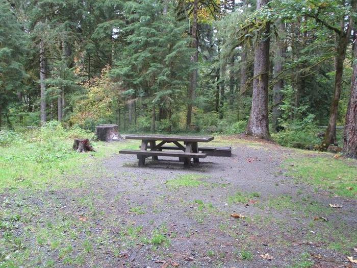 Verlot Campground Site 22