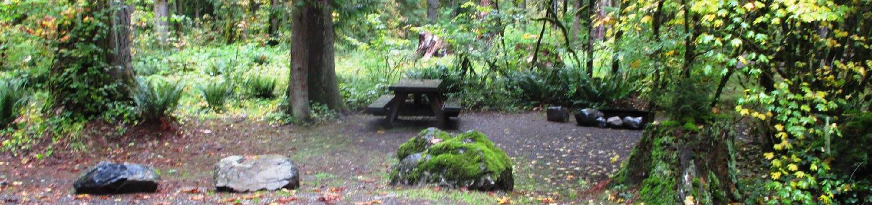Verlot Campground Site 25