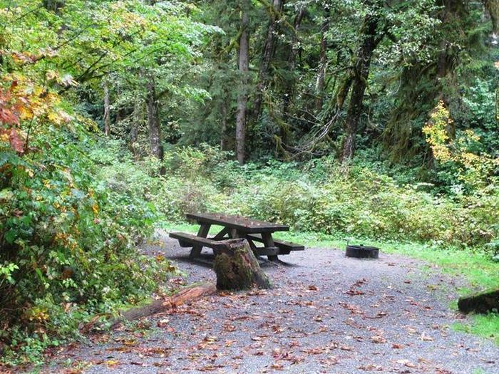 Turlo CampgroundSite 2