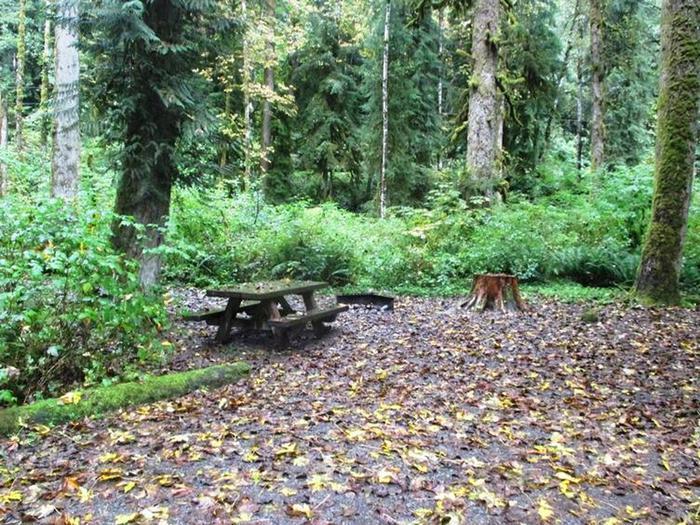 Turlo CampgroundSite 6