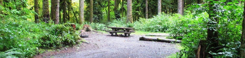 Turlo CampgroundSite 11