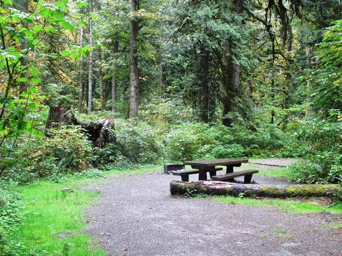 Turlo CampgroundSite 13