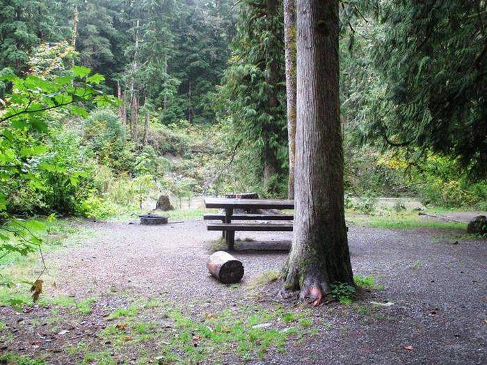 Turlo CampgroundSite 15