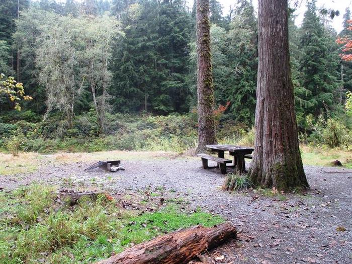 Turlo CampgroundSite 18