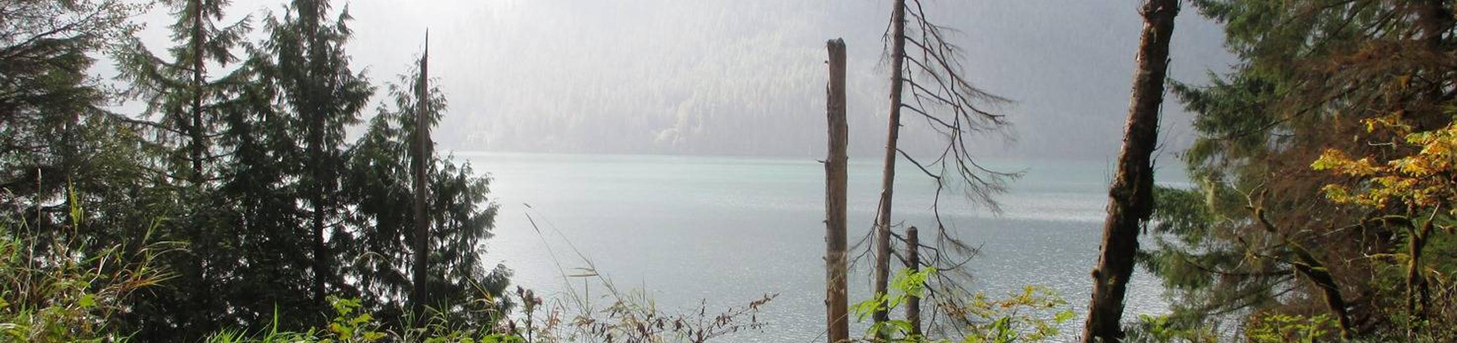 Shannon Creek CampgroundView of Mt. Baker Lake