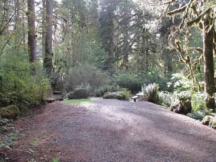 Shannon Creek CampgroundSite 1