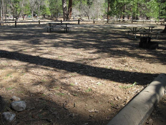 CampsiteCampsite 37.