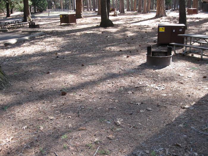 CampsiteCampsite 42.