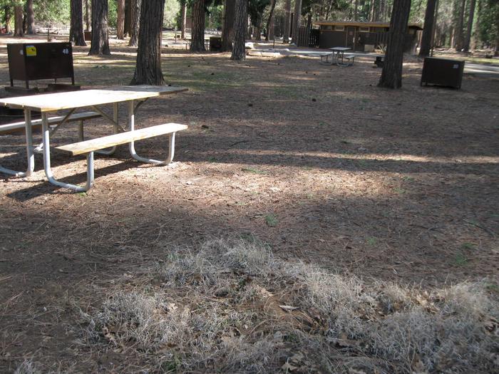 CampsiteCampsite 48.