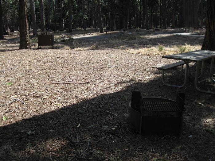 CampsiteCampsite 59.