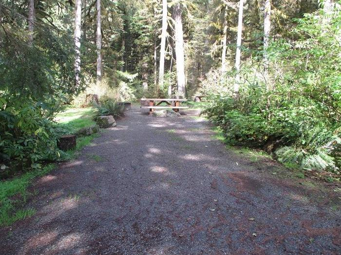 Shannon Creek CampgroundSite 2