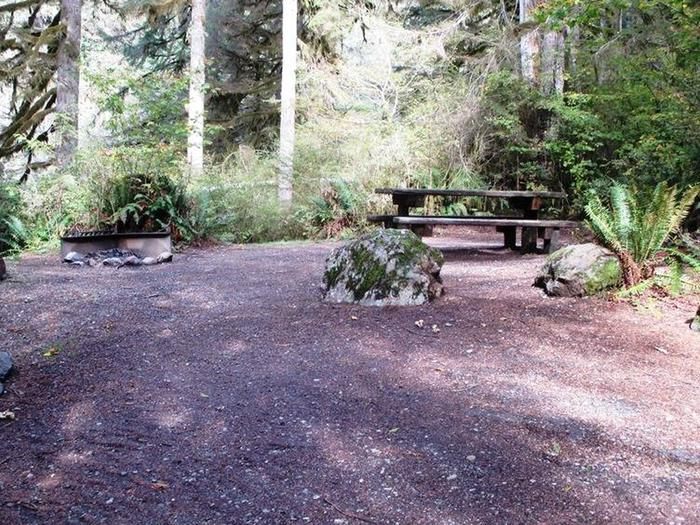 Shannon Creek CampgroundSite 4