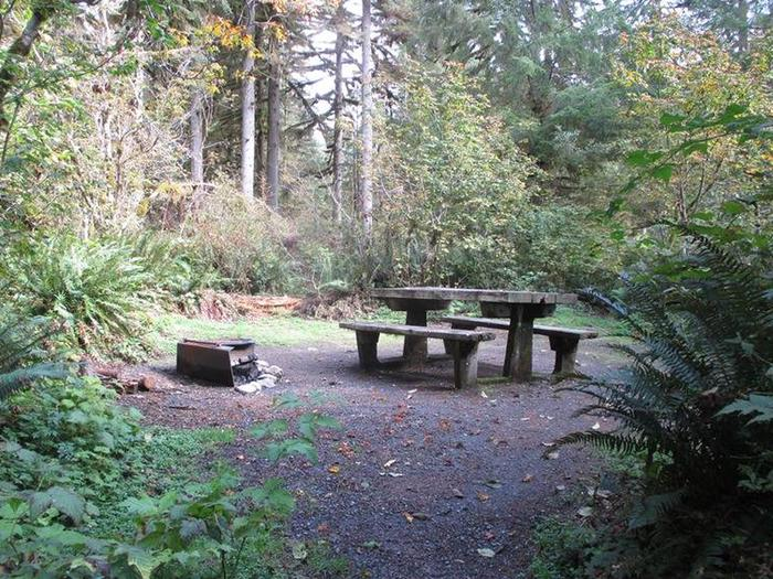 Shannon Creek CampgroundSite 7