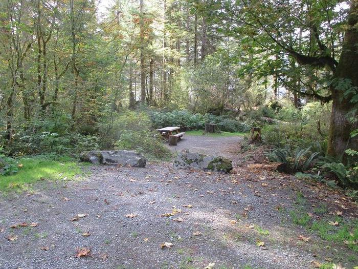 Shannon Creek CampgroundSite 8