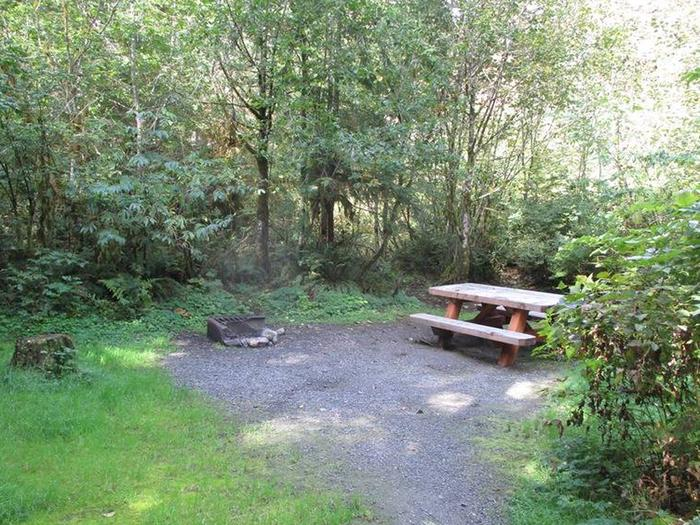 Shannon Creek CampgroundSite 11