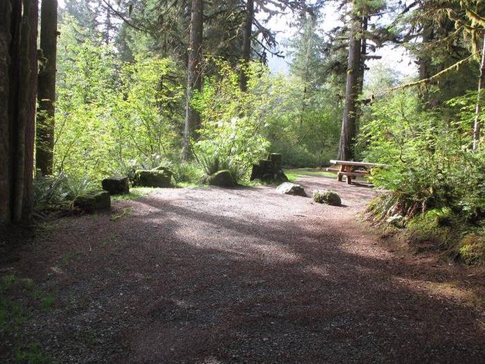 Shannon Creek CampgroundSite 12