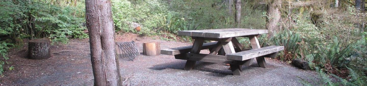 Shannon Creek CampgroundSite 14