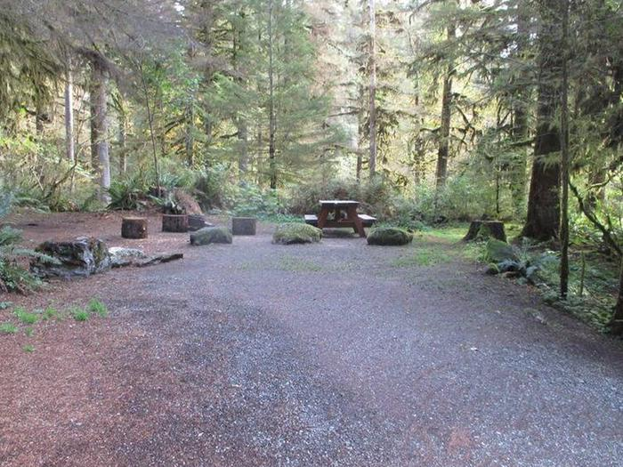 Shannon Creek CampgroundSite 15