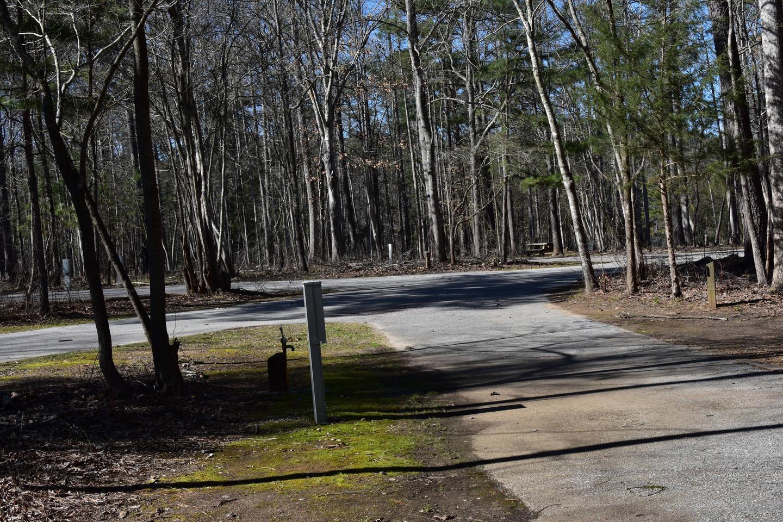 Fox Loop Site 1-3Fox Loop Site 1 - Taken March 6, 2020