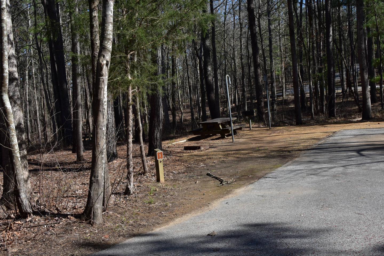 Fox Loop Site 1-6Fox Loop Site 1 - Taken March 6, 2020