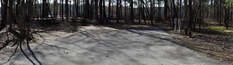 Fox Loop Site 2Fox Loop Site 2, March 6, 2020