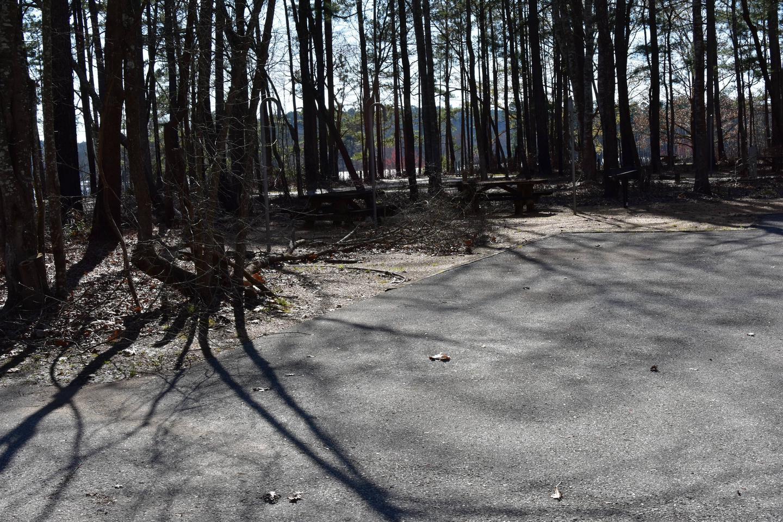 Fox Loop Site 2-1Fox Loop Site 2, March 6, 2020