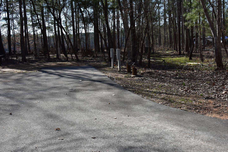 Fox Loop Site 2-2Fox Loop Site 2, March 6, 2020