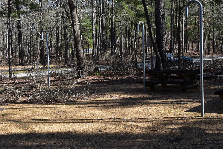 Fox Loop Site 2-5Fox Loop Site 2, March 6, 2020