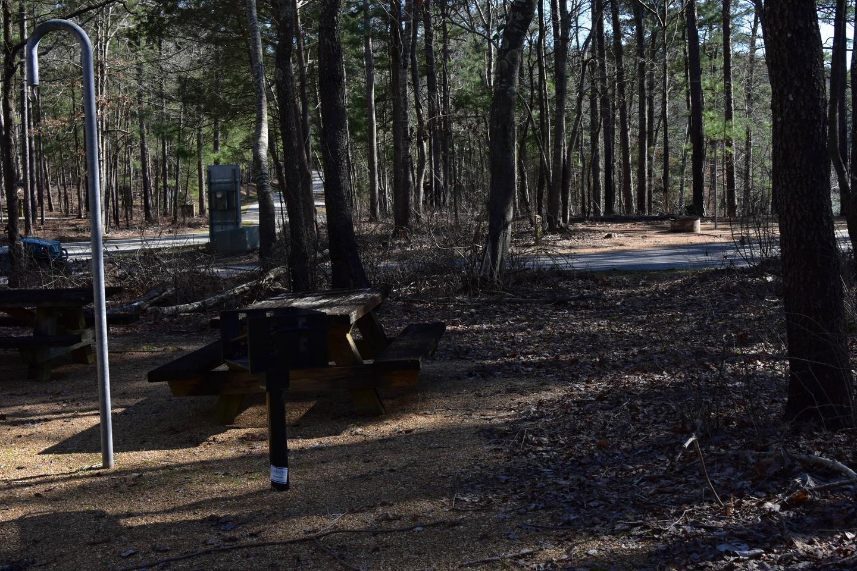 Fox Loop Site 2-6Fox Loop Site 2, March 6, 2020