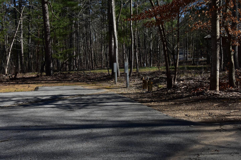 Fox Loop Site 3-1Fox Loop Site 3, March 6, 2020
