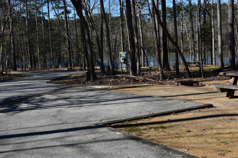 Fox Loop Site 3-3Fox Loop Site 3, March 6, 2020