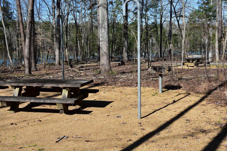 Fox Loop Site 3-5Fox Loop Site 3, March 6, 2020