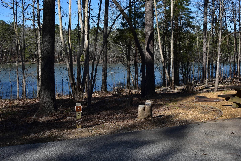 Fox Loop Site 4Fox Loop Site 4, March 6, 2020