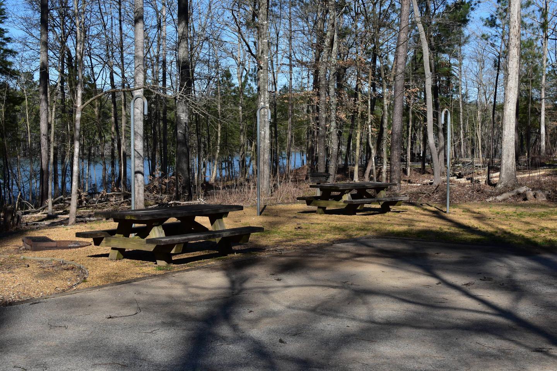 Fox Loop Site 4-1Fox Loop Site 4, March 6, 2020