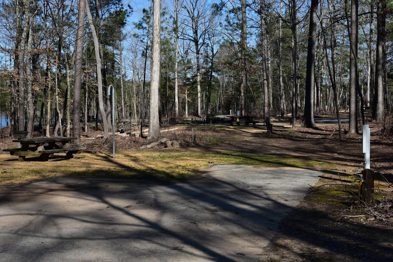 Fox Loop Site 4-2Fox Loop Site 4, March 6, 2020